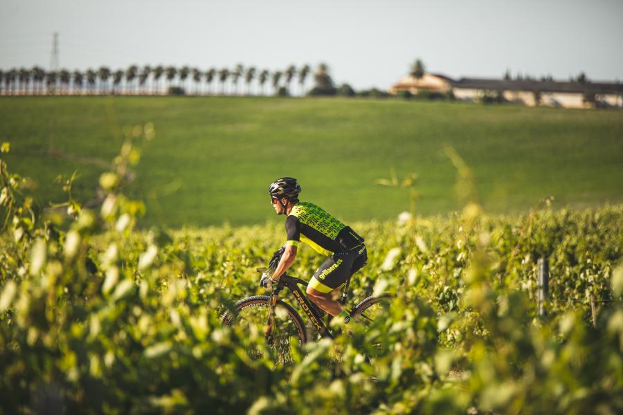 Sherry Maratón y Sherry Bike anuncian su fecha para el 2022