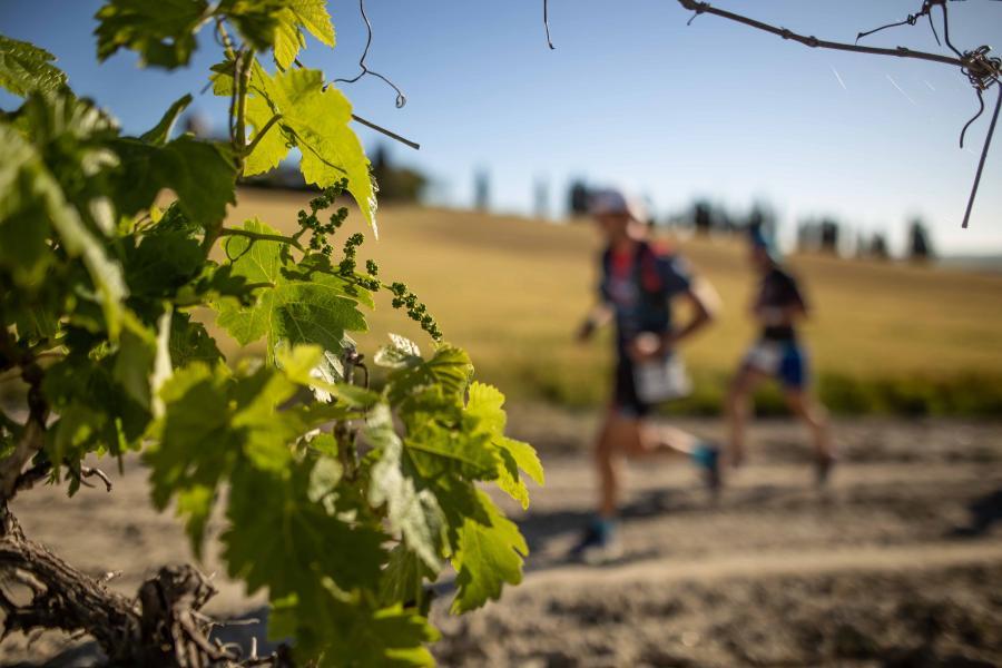 La Sherry Maratón abre su periodo de inscripciones